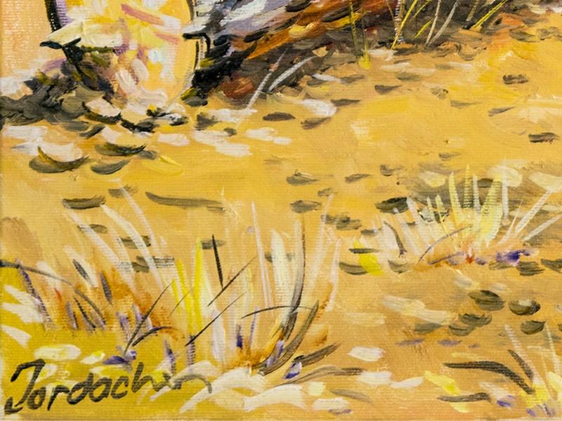 Caca Poza detaliu pictura (6)