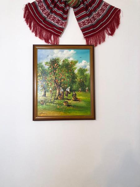 casa hangiului (2)
