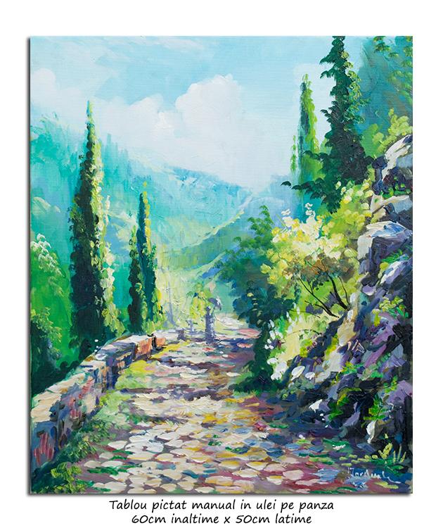 Peisaj de la munte, impresionist - 60x50cm ulei pe panza, Superb!
