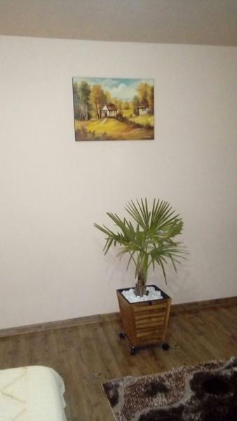 poza primita din locatia unde a fost expusa pictura de la noi (3)