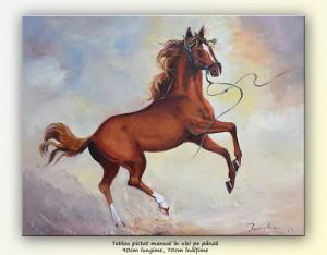 poza Pur Sânge Arab, Prințul - pictura ulei pe panza 90x70cm, Magnific!