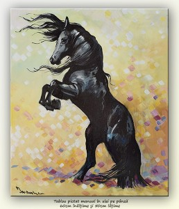 poza Perla neagră - pictura cal, ulei pe panza 60x50cm, Magistral!