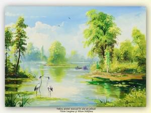 poza In Delta Dunarii - pictura ulei pe panza 70x50cm, Magnific!