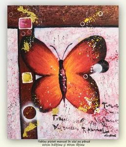 poza PRET BOMBA! Fluture (1) - 60x50cm tablou modern ulei pe panza, Superb!
