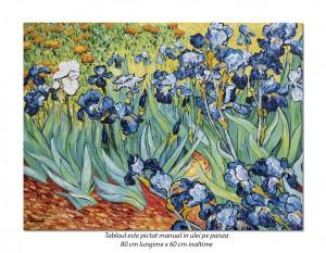 poza Irisi la Saint-Remy - 80x60cm, ulei pe panza de in, Repro van Gogh, Magnific!