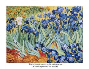 poza Irisi la Saint-Remy - 80x60cm, ulei pe panza de in, Repro van Gogh, Magnific! (2)