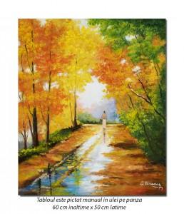 Pe drumul meu - 60x50cm tablou ulei pe panza, Superb!